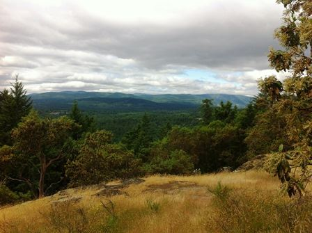 View from the top of Cobble Hill Mountain