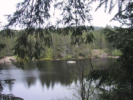 View of Spectacle Lake