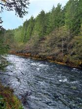 Chemainus River