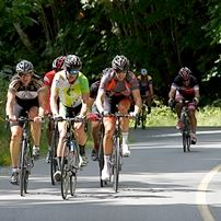Road Cycling in Cowichan