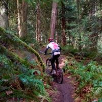 Mountain Biking in the Cowichan Valley